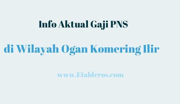 Informasi Gaji & Tunjangan PNS di Ogan Komering Ilir pada Tahun 2021